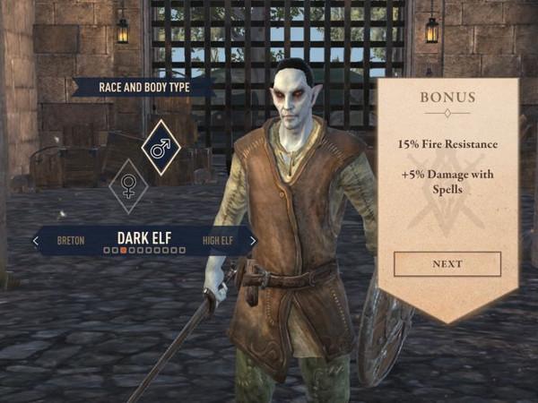 The Elder Scrolls Blades - лучший класс/раса