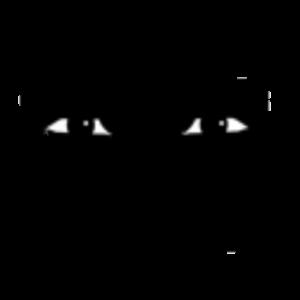 Мужское лицо