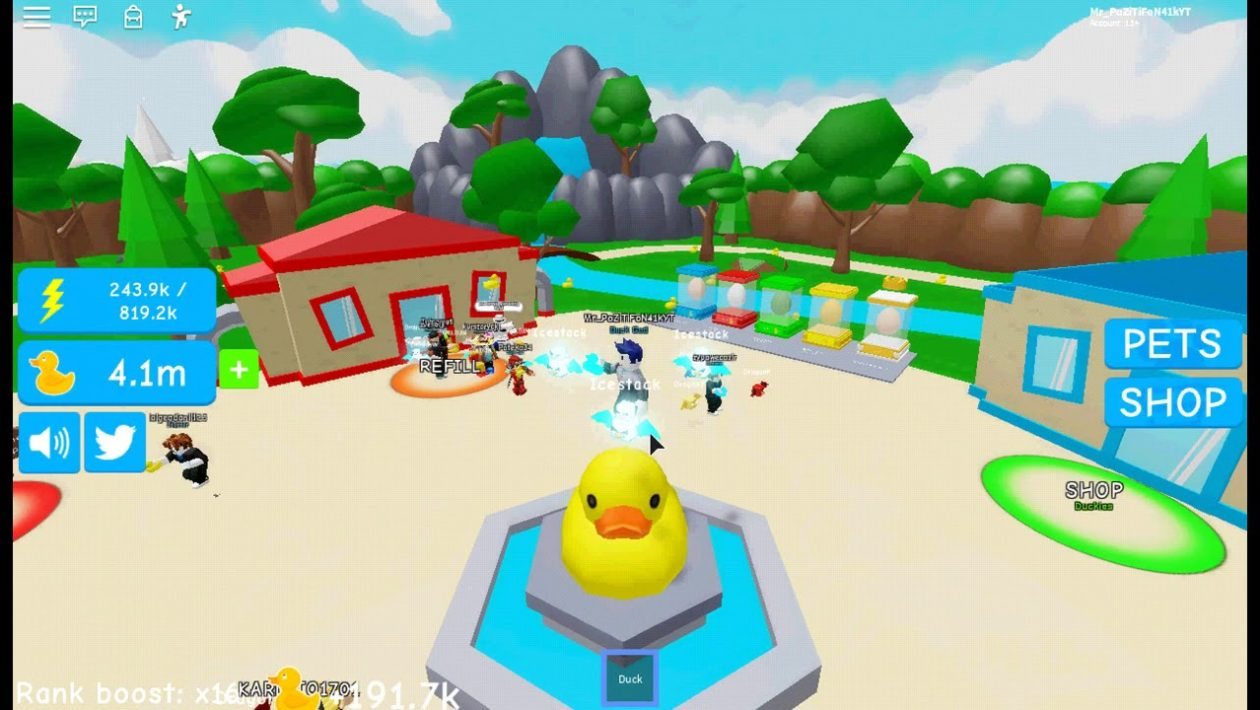 Duckie Simulator - коды