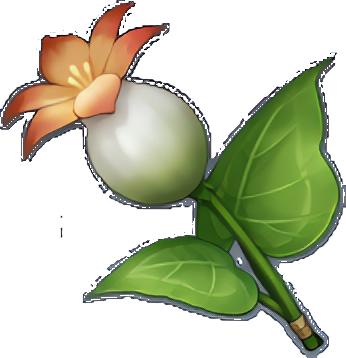 Genshin Impact - где найти растение Калла Лилия