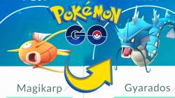 Гайд Pokemon GO. Где найти Мэджикарпа и Гярадоса