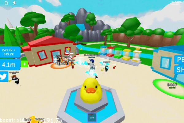 Duckie Simulator - коды